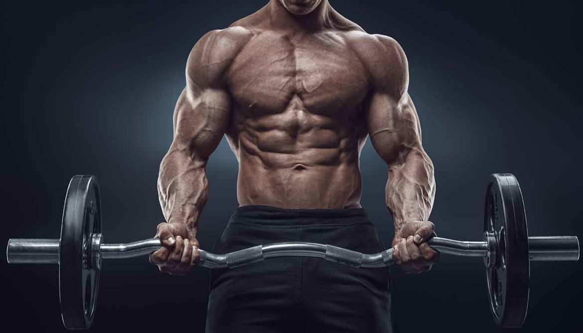Are you ready to Build Muscle?