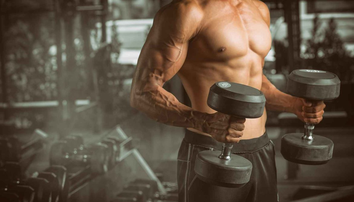 How Lifting Weights can help with Fat Loss